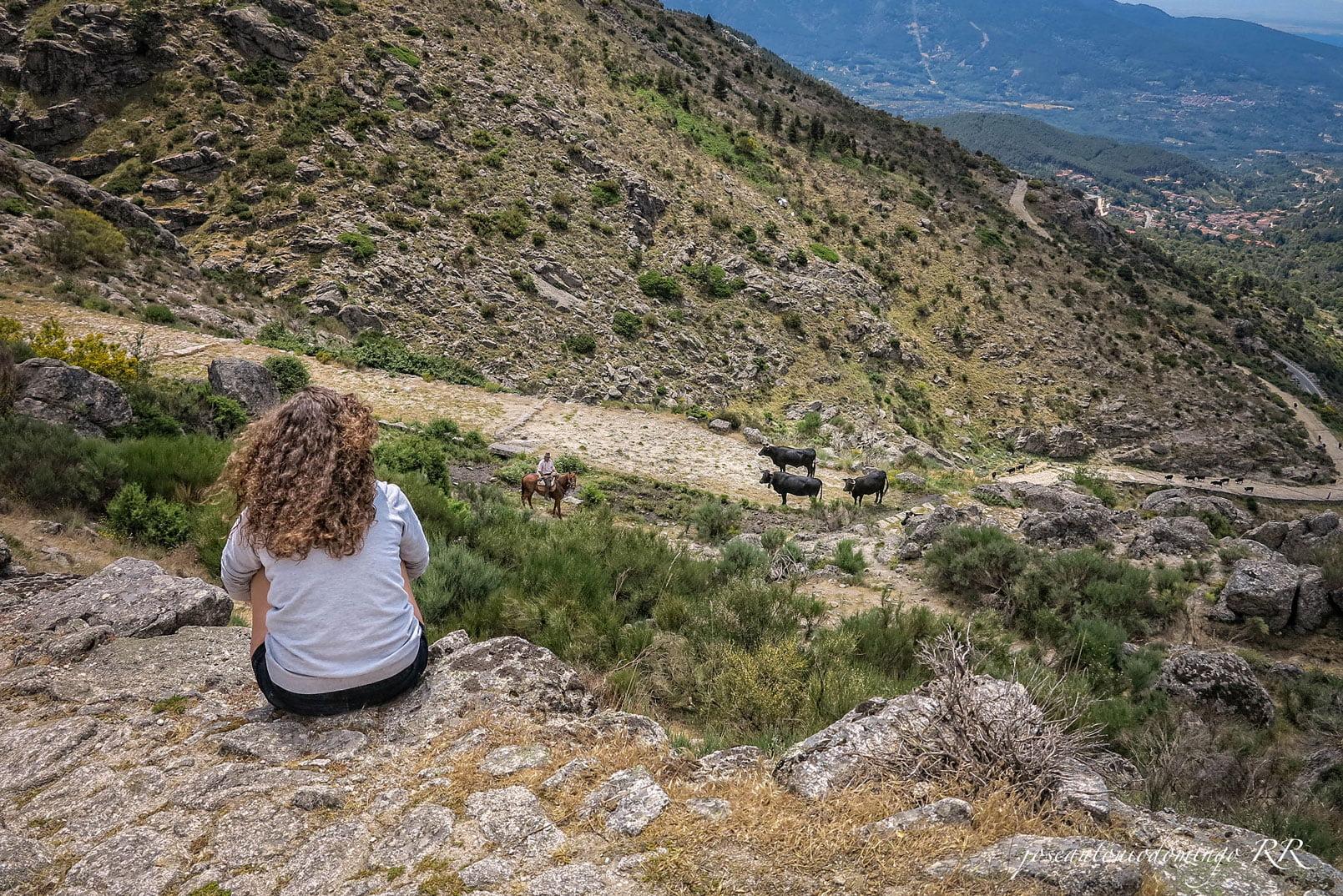 Puerto El Pico